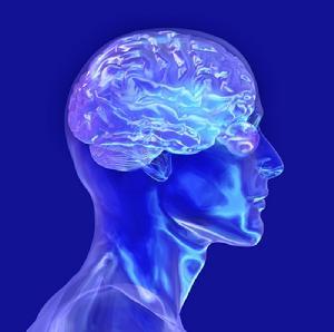 大脑工作节奏表-大久宝