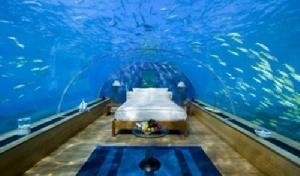 海底洞房-大久宝